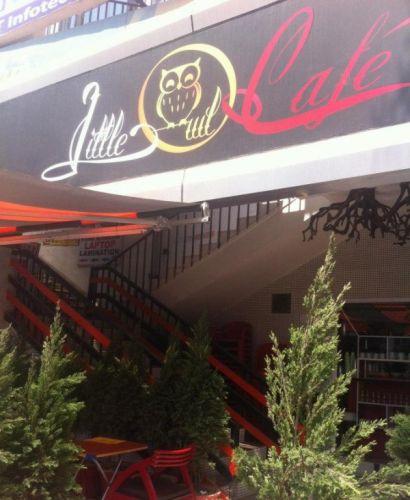 Image result for 3. Little Owl Cafe, Noida
